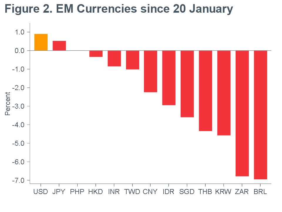 Macro Briefing - MB_EM Currencies since 20 January